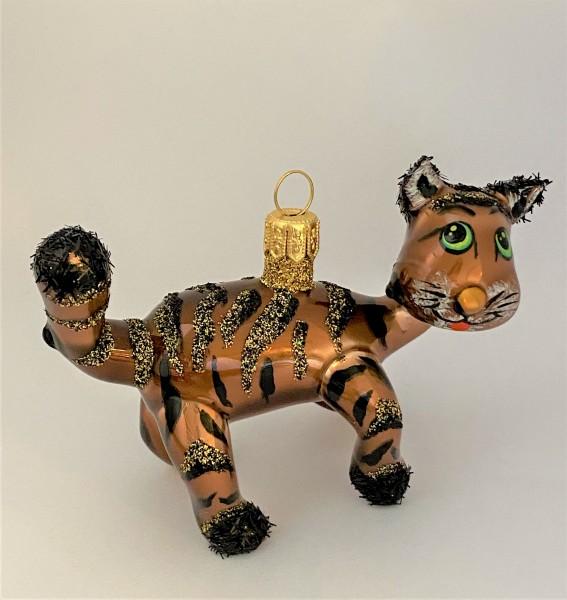 Herzige rote Tiger-Katze