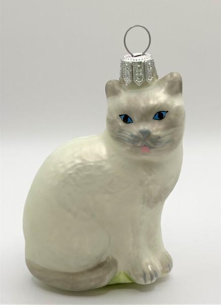 Katze sitzend, weiß