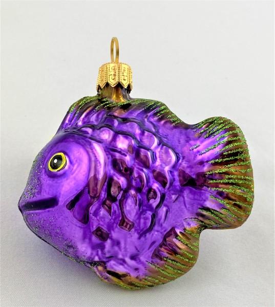 Niedlicher violetter Korallenfisch