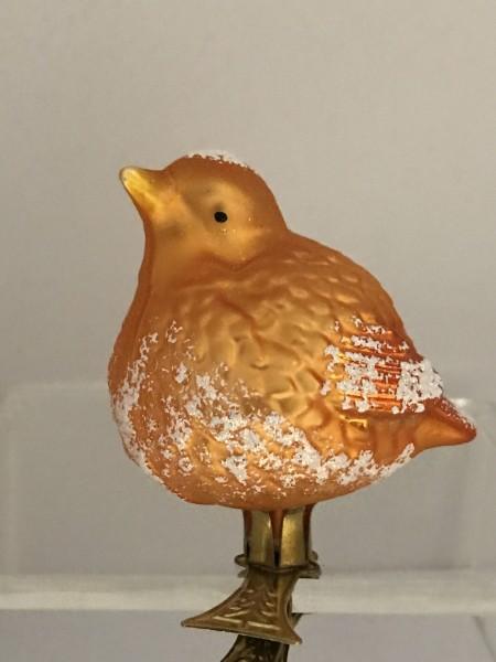 Dickes oranges Vögelchen auf Clip