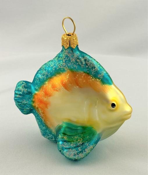 Kleiner Riff-Fisch mit blauen Flossen