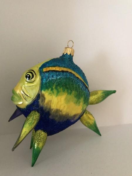 Grosser bunter Riff-Fisch