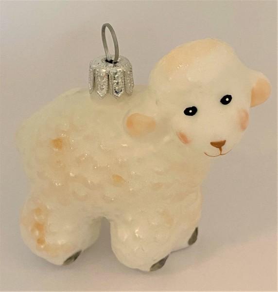 Kleines weisses Lamm