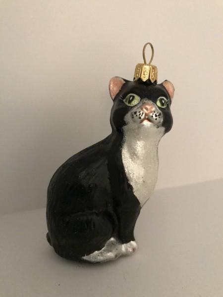 Sitzende schwarze Katze mit weisser Brust