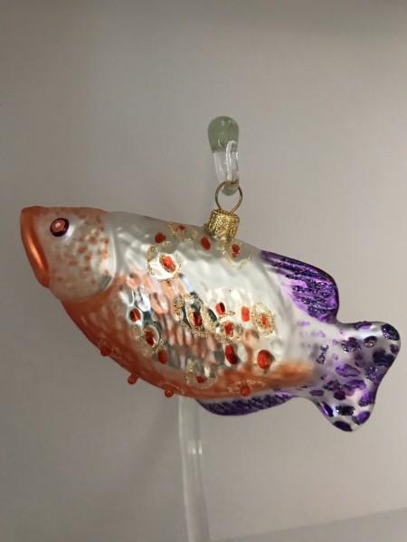 Schützenfisch mit violetter Schwanzflosse