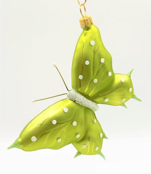 Schmetterling hellgrün, weisse Tupfen