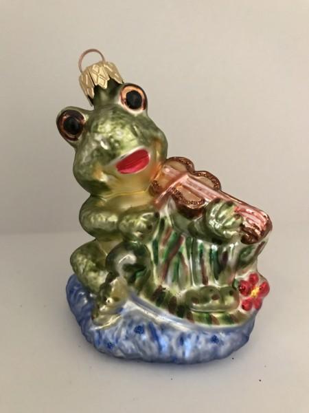 Fröhlicher Frosch spielt Geige