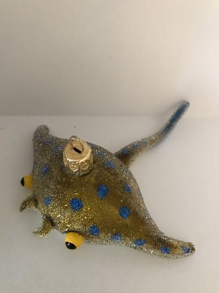 Stingray, Stachelrochen ocker blau