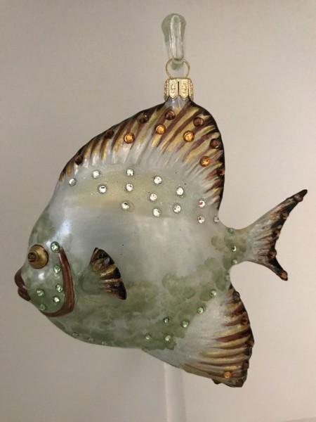 Grosser grauer Riff-Fisch mit Glitzersteinen