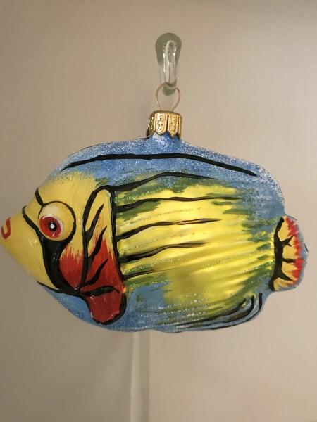 bunter Riff-Fisch