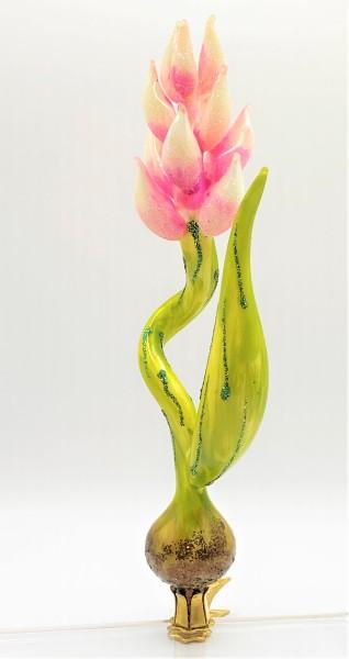 Exotische Blüten-Rispe, rosa, auf Clip