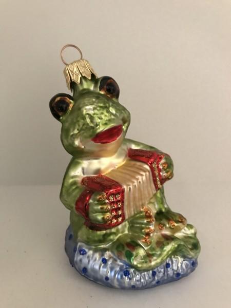 Fröhlicher Frosch spielt Handorgel