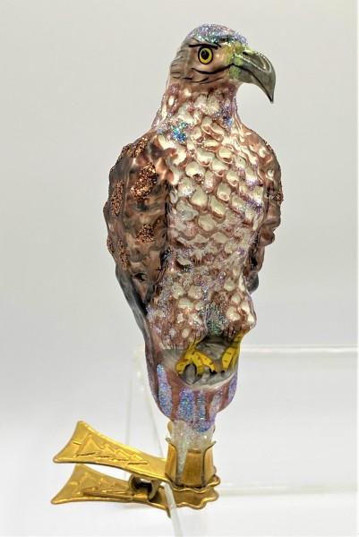 Adler auf Clip