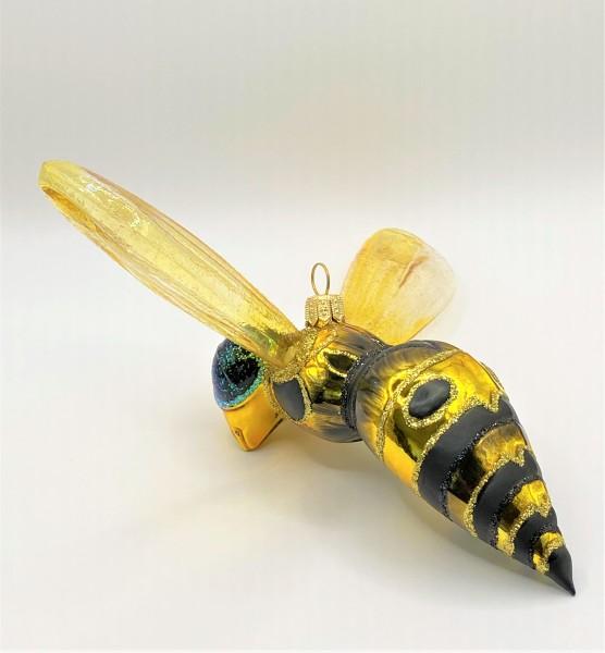 Grosse Wespe mit transparenten Flügeln, KOMOZJA MOSTOWSKI
