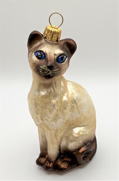 Siam - Katze