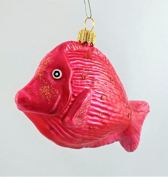 Glänzend pinkfarbener Riff-Fisch