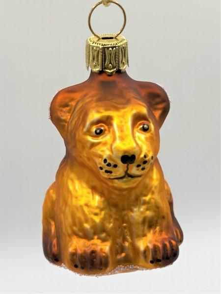 Löwen-Baby