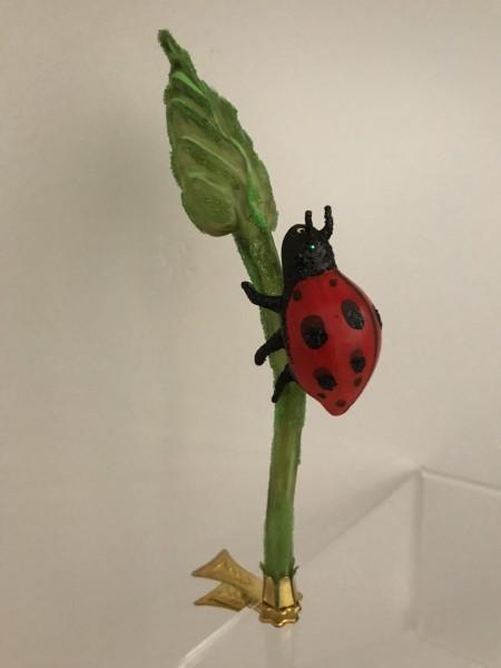 Marienkäfer krabbelt den Blattstiel hoch