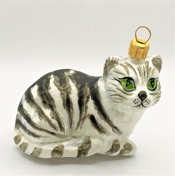 Weisse Tigerkatze mit grünen Augen