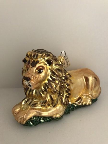 Stolzer liegender Löwe